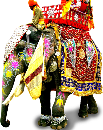 Download Kerala Elephant Png Hd Png Gif Base From their protection to tourism and temple festivals. download kerala elephant png hd png